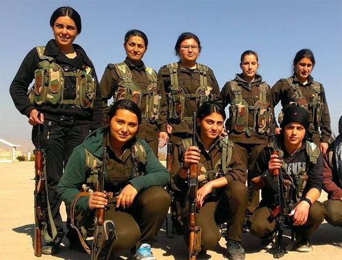 Der Kampf in Kurdistan: Entwicklungen und Perspektiven