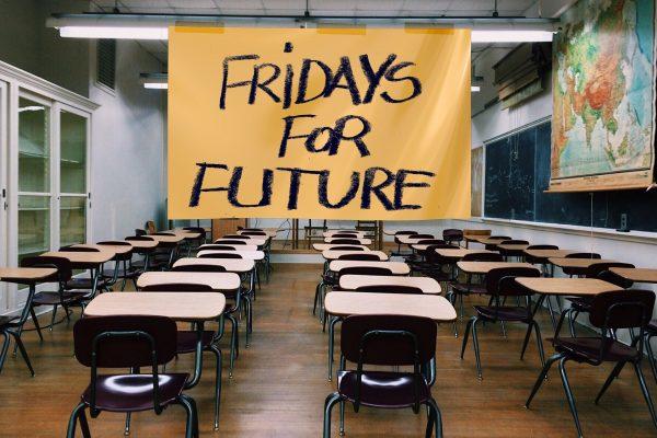 Wie kann ich den #Schulboykott an meiner Schule organisieren?