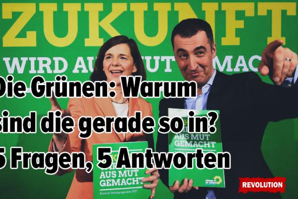 Die Grünen: Warum sind die gerade so in? 5 Fragen, 5 Antworten