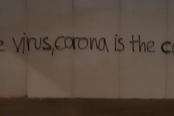 Corona ist nicht die Heilung der Natur!